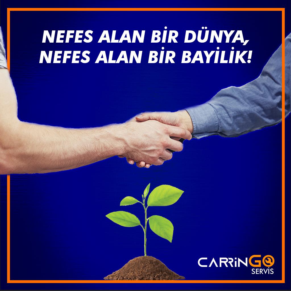 fidan kampanya